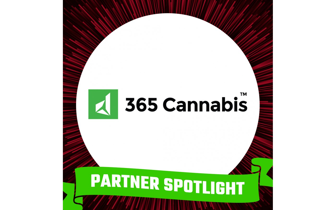 graphic with partner spotlight: 365 Cannabis
