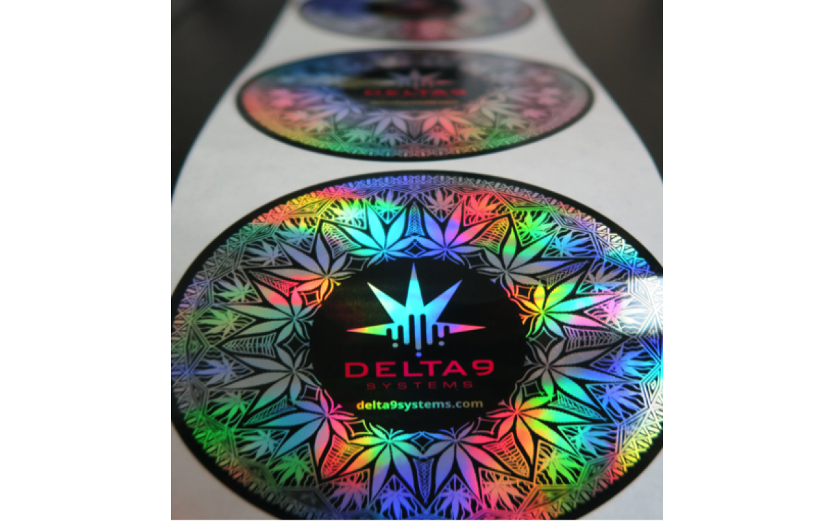 Silver holographic label sticker of Delta9 Systems logo