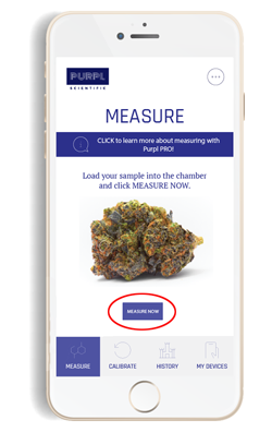 Load Your Cannabis Sample And Start Purpl PRO Measurement
