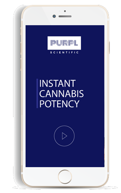 Open the Purpl PRO Instant Cannabis Potency Measurement System App